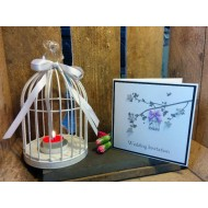 Two Little Love Birds in a Cage